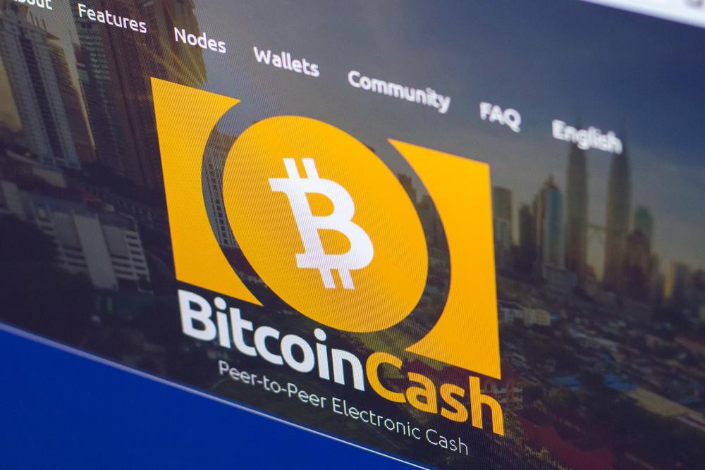Náhledový obrázek článku Zaostřeno na bitcoin cash